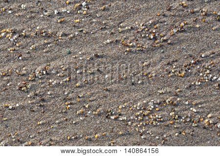 Wet sand and small stones on the beach closeup. It can be used as a background.