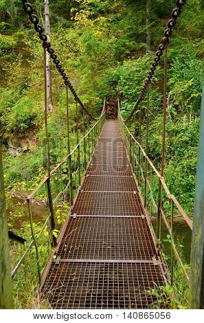 Hanging bridge among trees in the forest. Bridge on the trail in Slovak Paradise National Park.