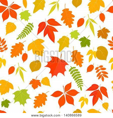 Seamless pattern of colorful cartoon autumn leaves on a white background. Vector stock illustration.