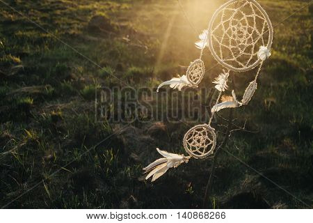 dreamcatcher hanging from a tree in a field at sunset