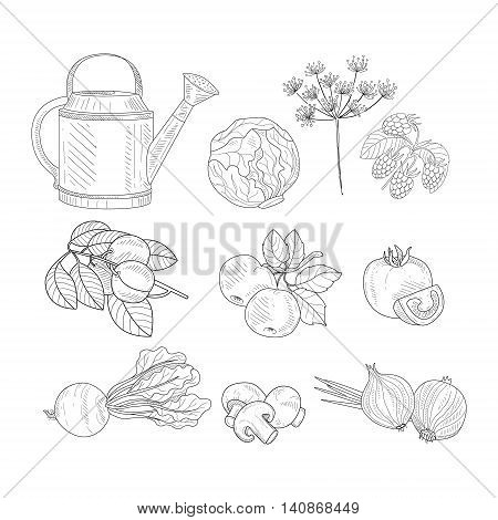 Farm Product Clipart Elements Hand Drawn Realistic Detailed Sketch In Classy Simple Pencil Style On White Background