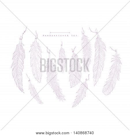 Boho Style Feathers Hand Drawn Realistic Detailed Sketch In Classy Simple Pencil Style On White Background