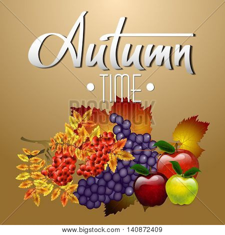 Autumn vector background. Autumn still life of rowan, apple and grape. Autumn time. Hand-written lettering. Typography