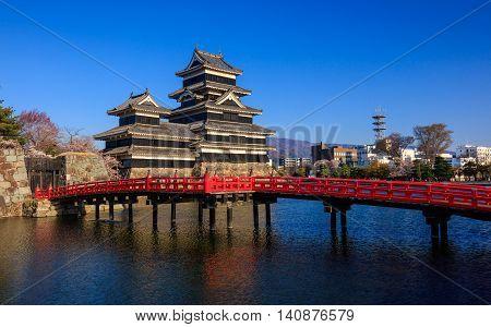 Matsumoto castle in cherry blossom season Nagano Japan