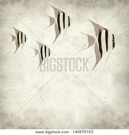 textured old paper background with angelfish illustration