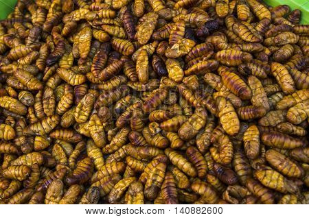 Chrysalis Larval food of Asians in Thailand market