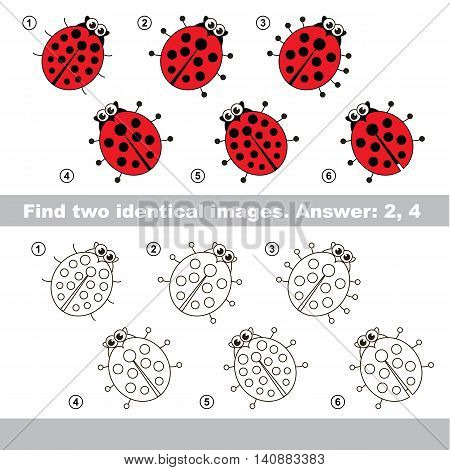 The design difference. Vector visual game for kid education. Simple level of difficulty. Easy educational game. Task and answer. Find two similar Ladybugs.