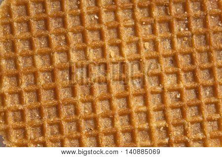 Dutch Caramel Waffle Surface
