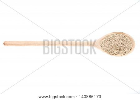 Dry yeasts on wooden spoon. Package of fresh yeast bar on back. Isolated on white image. Yeast is a main ingredient of fresh bread dough, pizza dough and many other dough's.