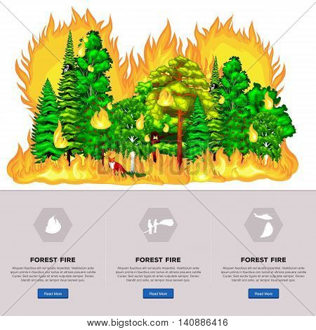 Forest Fire, Wildfire burning tree in red and orange color at night