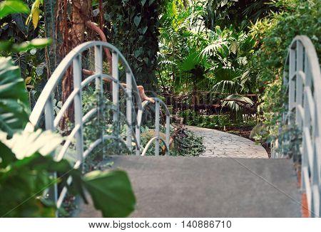 Bridge and walkway in botanical garden