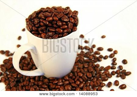 Cup of java beans in a cup