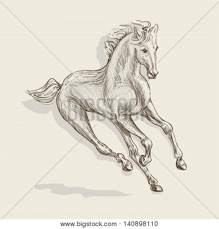 handmade vector drawing of a galloping horse
