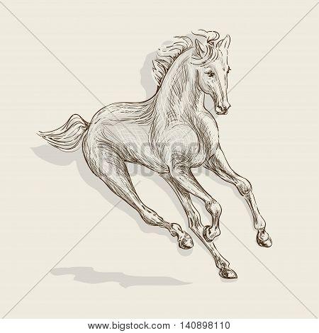handmade vector drawing of a galloping horse