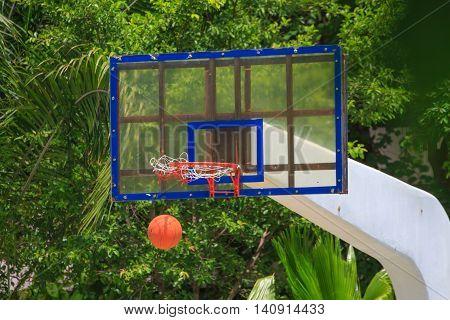 Basket Ball Heading The Hoop