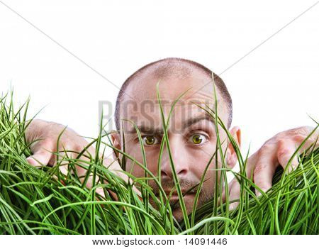 Man peering through tall grass with white background