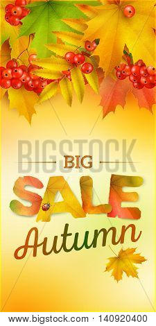 Autumn sale vertical banner vector background with maple leaves and berries of mountain ash