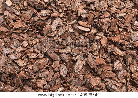 Natural bark used as a soil covering the garden. Background and texture