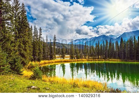 Sunny autumn day in Jasper National Park  in Canada. The small superficial lake is surrounded with coniferous forest