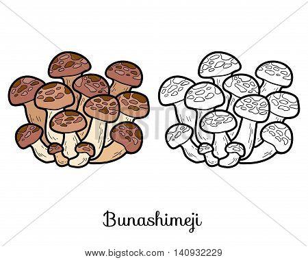 Coloring Book. Japanese Edible Mushrooms, Bunashimeji