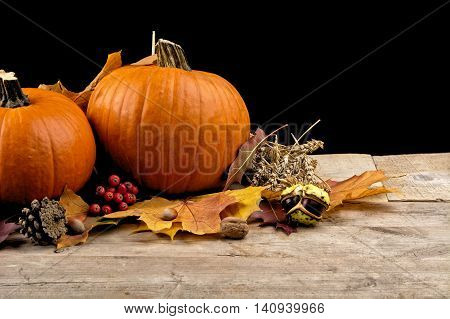 Pumpkins With Autumn Leaves For Thanksgiving Day On Black Background