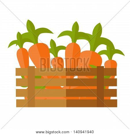Fresh carrot at the market vector. Flat design. Delivery farm products, grocery store assortment, foods for diet concept. Illustration of wooden box full of ripe vegetables. Isolated on white.