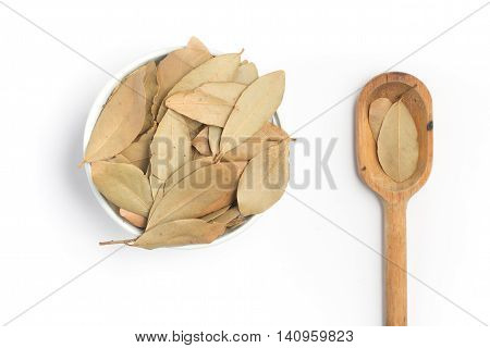 Bulk Bay Leaves into a bowl and spoonn over a white background. (Laurus nobilis)