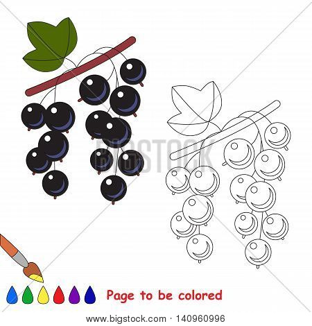 Blackcurrant to be colored. Coloring book for children. Visual educational game. Easy kid gaming. Simple level of difficulty.