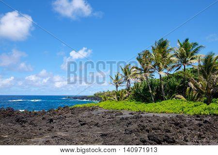 Landscape View Of Ocean Coastline In Maui