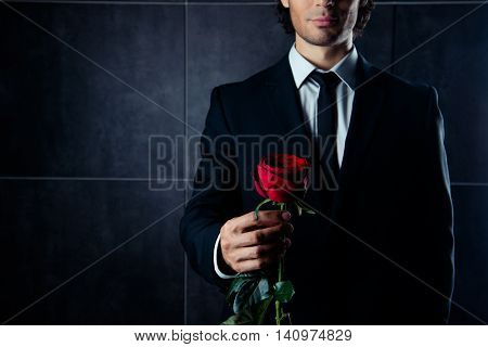 Closeup Photo Of Handsome  Young Man In Formalwear  Holding Red Rose