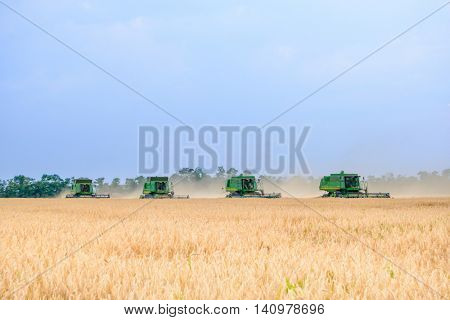 ZAPORIZHZHYA, UKRAINE - July 28, 2015: Four John Deere Combine Harvesters Harvesting Wheat in the Field.