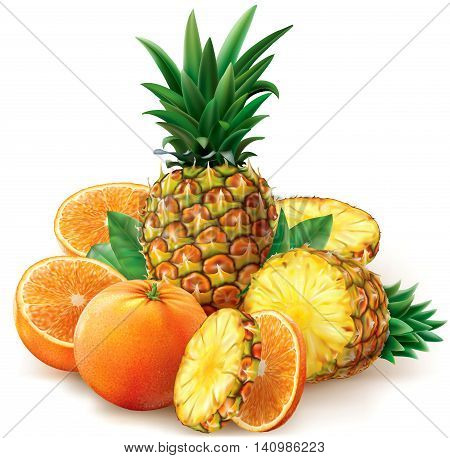 Composition with oranges and pineapple fruits with leaves. Vector illustration
