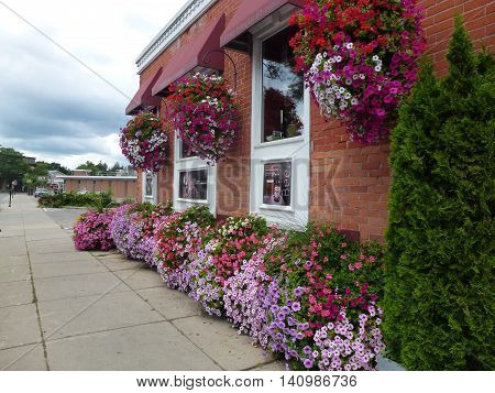 Canada, August 1, 2016, Stratford,ON, A place with many flowers