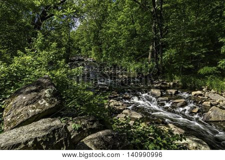 Running Creek through a forest in Montgomery County PA