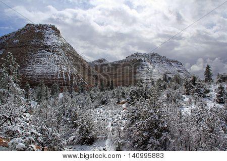 Beautiful Landscape in Zion National Park, Utah