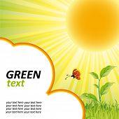 Постер, плакат: зеленая природа фон