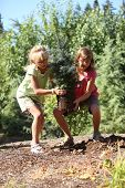 image of planting trees  - Kids planting a tree - JPG