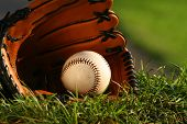 picture of baseball bat  - Baseball and glove on the grass after the big game - JPG
