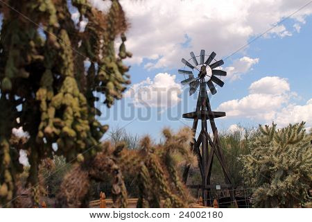 Focus on the Windmill