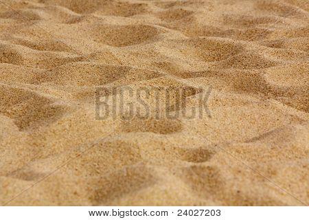 Gold Beach Sand