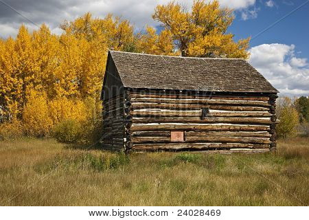Log Cabin With Aspen Trees