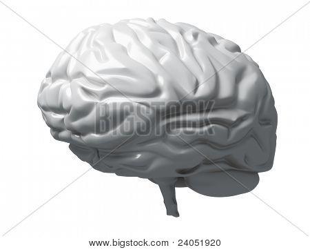 Matéria cinzenta do cérebro