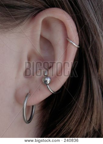 Ear With Multiple Piercings