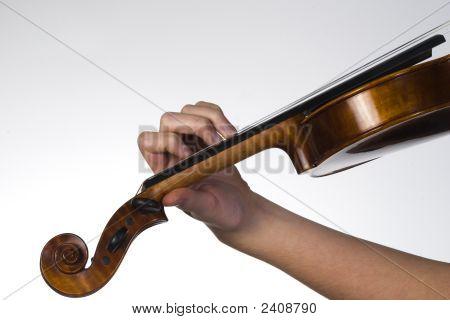 Fingering Violinist
