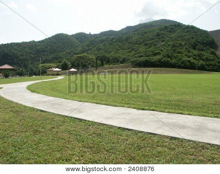 Field01