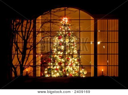 Welcome Home Christmas Tree In Window