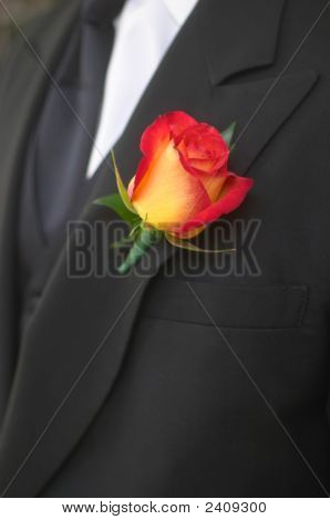 Boutonniere On Groom.