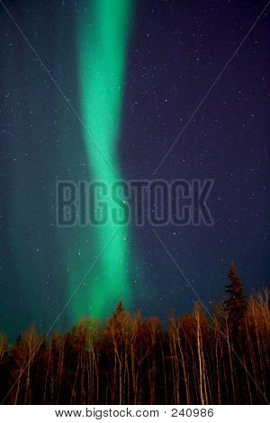 Vertical Aurora Strip