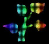 Dotted Bright Halftone Flora Plant Icon Using Rainbow Color Variations With Horizontal Gradient On A poster