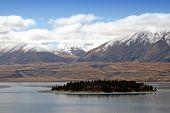 foto of mckenzie  - Lake Tekapo  - JPG